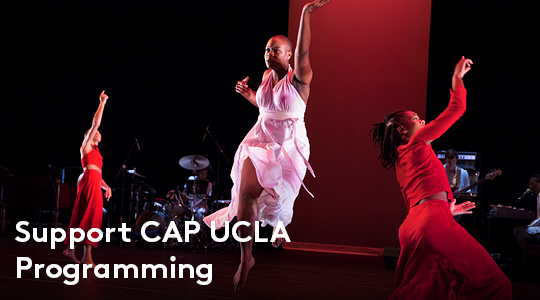 Make a Gift to Support CAP UCLA Programming