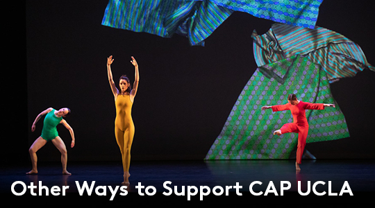 Other Ways to Support CAP UCLA